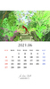 2021年06月カレンダー